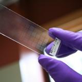 Les biotechnologies de la santé pour diagnostiquer